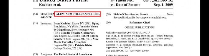 Aluminium tolerant GMO patent